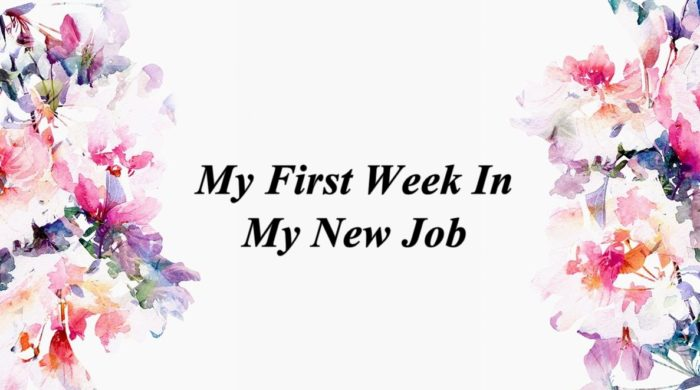 My First Week In My New Job