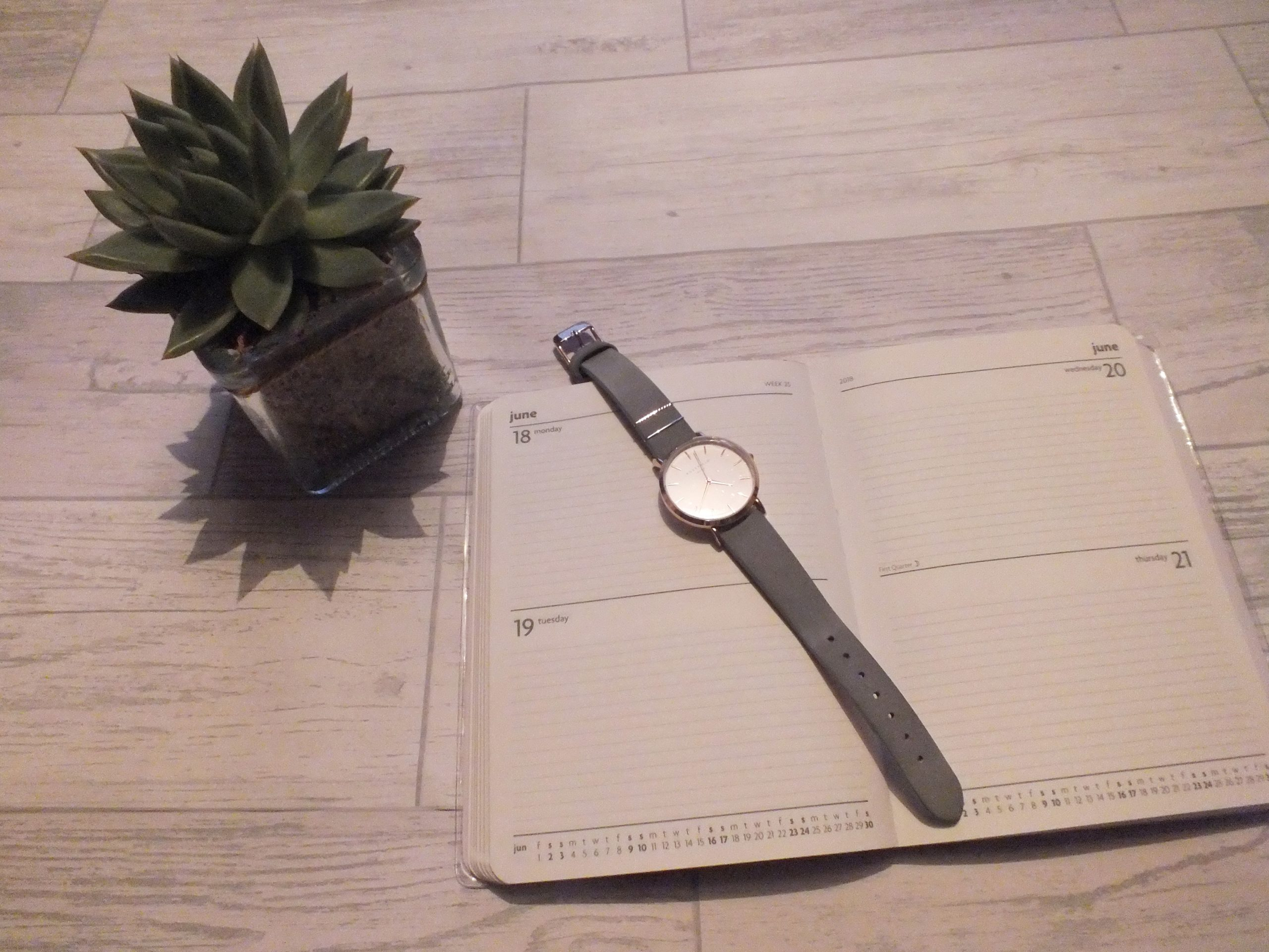 diary notebook watch cactus flatlay