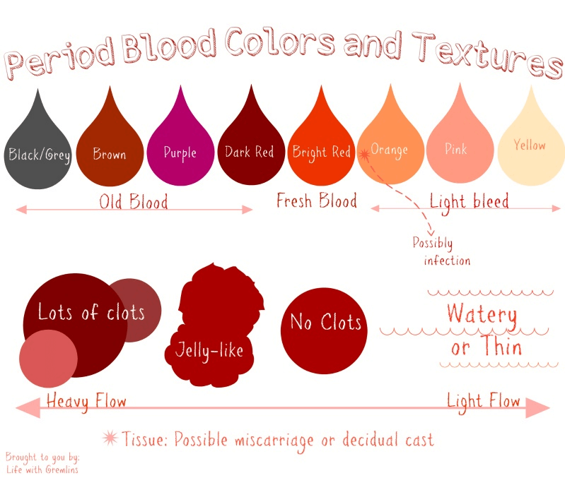Period Blood Colours and Textures Infographic Chart