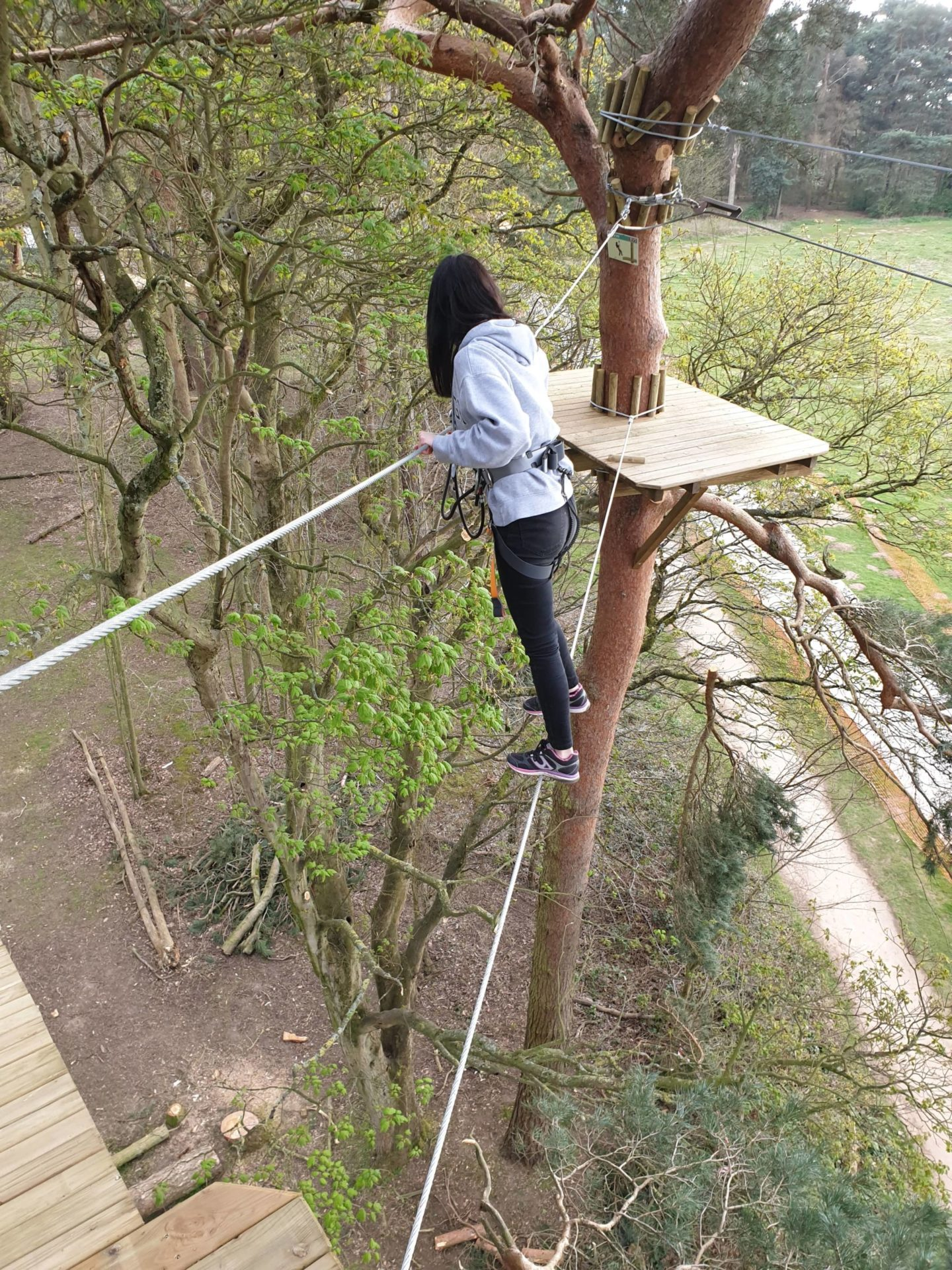 Girl in treetops walking away from camera on single wire with nothing to hold on to