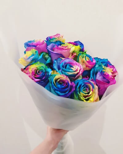 bouquet of rainbow coloured roses against a white background